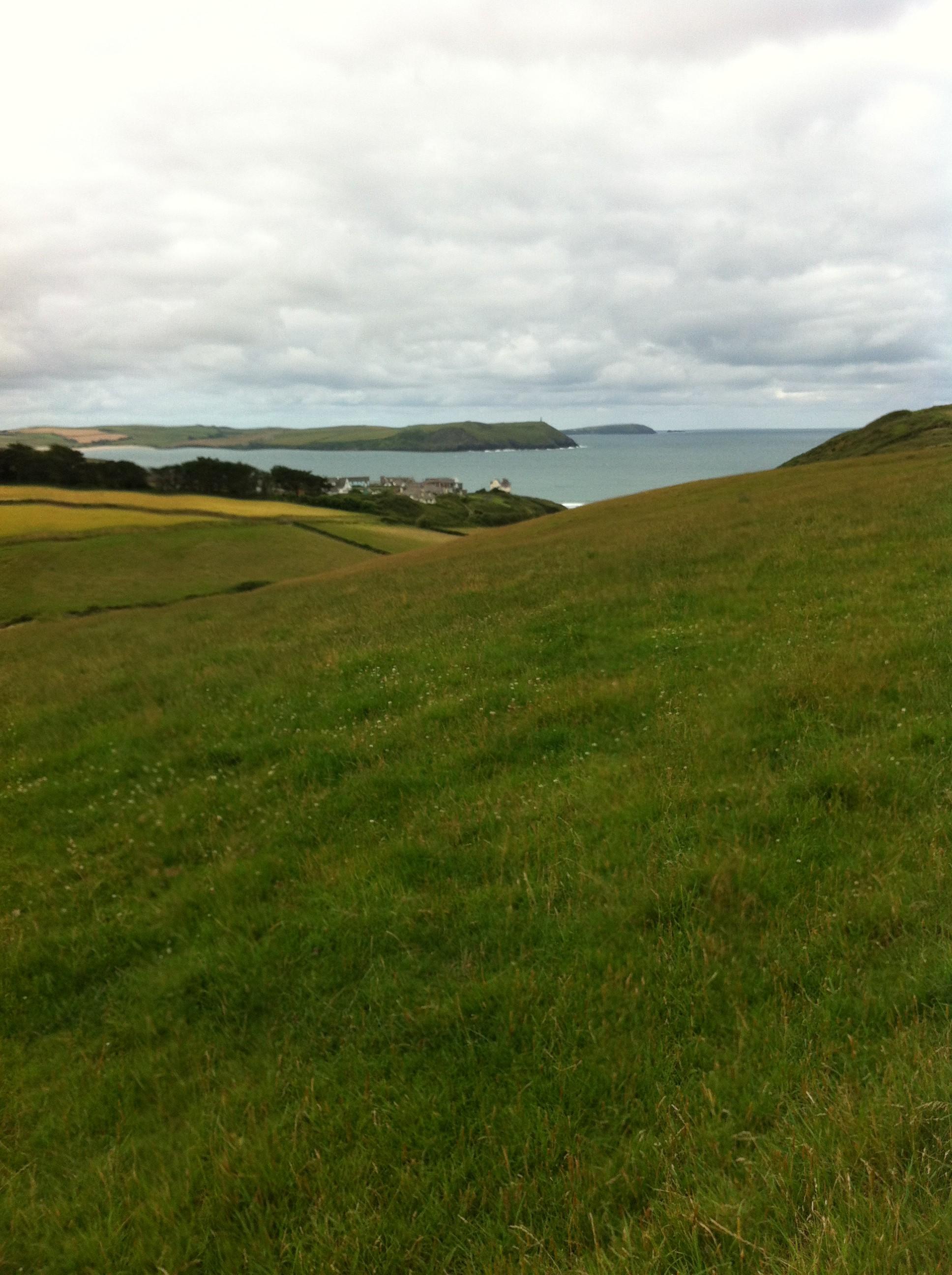 Across the heath